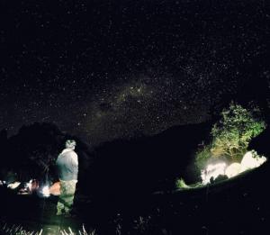 Milky Way Papandayan