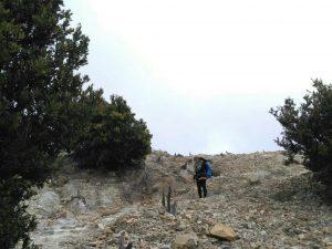 Jalur dari Hutan Mati ke Basecamp