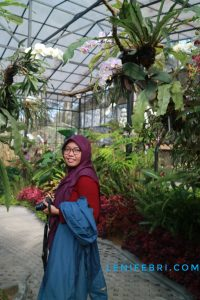Lenifeycom_Orchid House di Orchid Forest Cikole