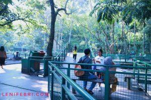 lenifey.com_salah satu tempat di Forest Walk Siliwangi Bandung